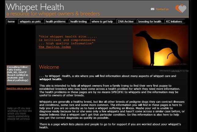 Whippet health