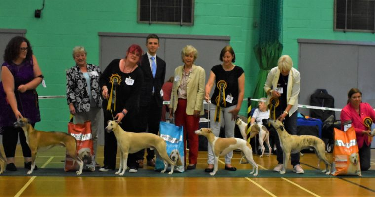 Silver Anniversary Open Show September 2019 results